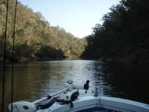 Nepean River Tours